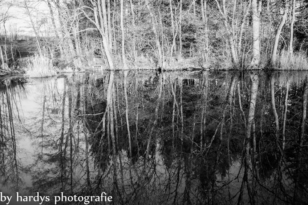 Holzmühle_spiegelung_sw_wp